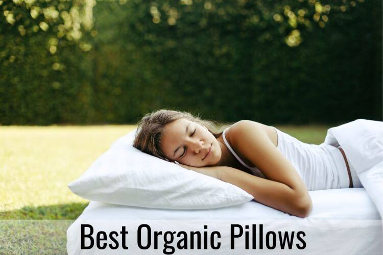 Best Organic Pillow
