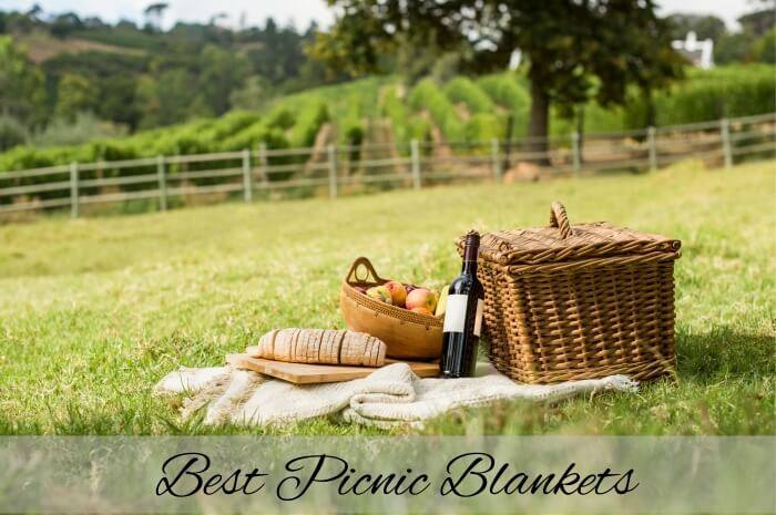 Best Picnic Blankets